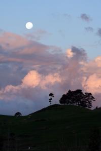 Otaika Valley at dusk, Northland