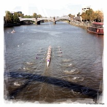 Rowing on the Yarra River