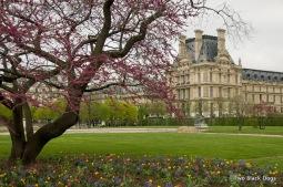 Paris 02-04-2011 12-07 AM