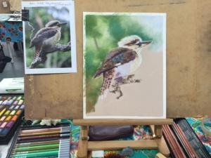 kookaburra illustration
