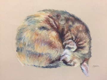 Honey the cat illustration